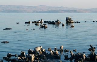 Van Gölü'nde sular çekildi, mikrobiyalitler ortaya...