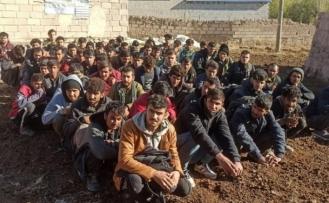 Van'da 188 düzensiz göçmen yakalandı
