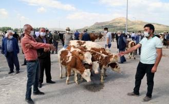 Van'daki hayvan pazarı hizmet vermeye başladı