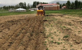 Başkale'de 1 ton patates ekildi