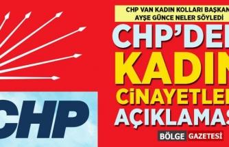 CHP Van Kadın Kolları'ndan, kadın cinayetleri açıklaması